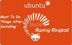 Must To Do Things After Installing Ubuntu 13.04