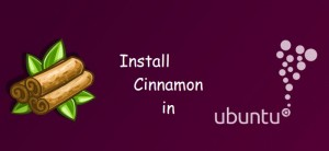 How To Install Cinnamon In Ubuntu 14.04