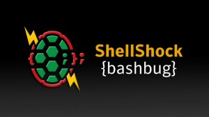 Check If Your Linux System Is Vulnerable To Shellshock And Fix It