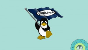 Countries With Linux Based National Operating Systems