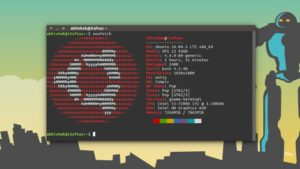 Display Linux Distribution Logo in ASCII Art in Terminal