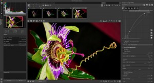 Install Adobe Lightroom Alternative RawTherapee In Ubuntu
