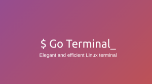 [Review] Go Terminal: Next Generation Terminal for Linux