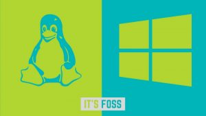 Best Windows Look Alike Linux Distributions For Beginners