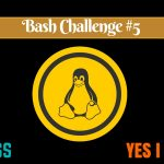 [Bash Challenge] Can You Solve This Bash Scripting Exercise?