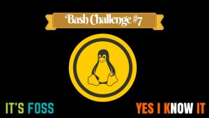 [Bash Challenge 7] Can You Solve This Bash Script Puzzle?