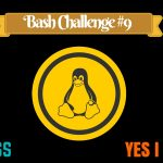 [Bash Challenge 9] Can You Solve This Bash Script Puzzle?